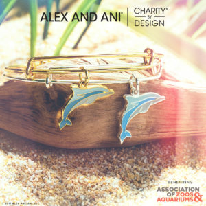 Alex and Ani Dolphin Charity Bangle
